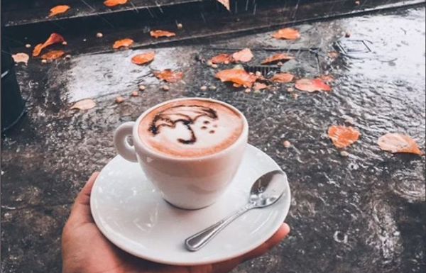 allumiar casa de café aracaju 4